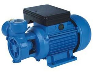 0.75HP Vortex Clear Water Pump With Brass Impeller For Steam Generator